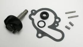 SGR 37282006 - Kit Reparación Bomba De Agua Minarelli AM6