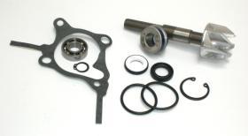 SGR 37282010 - Kit Reparación Bomba De Agua Honda Foresight 250